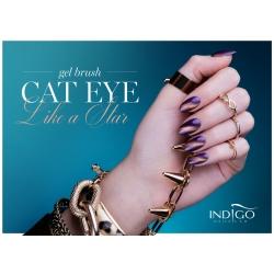 Cat Eye Like a Star Gel Brush 5ml