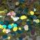 Confetti Shiny Bleu Gold 3g